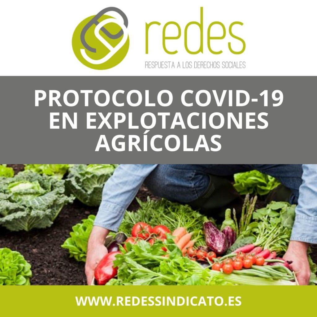 PROTOCOLOS COVID-19 EN EXPLOTACIONES AGRÍCOLAS